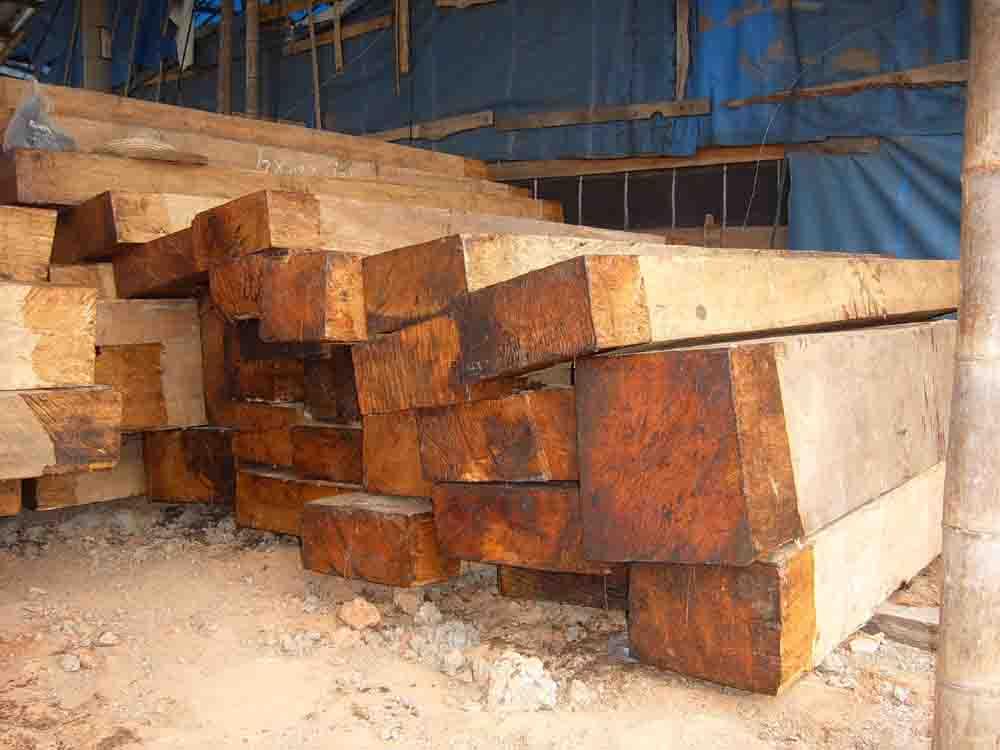 红豆杉原木价格 中国木材网:东南亚原木价格行