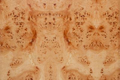 树瘤木皮贴图