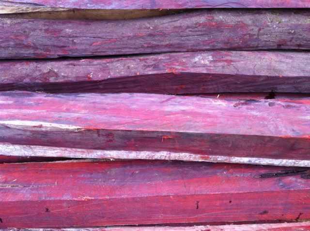 非洲小叶紫檀