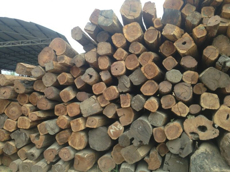 缅甸酸枝(白酸枝)--红木_产品图片信息_中国木材网!