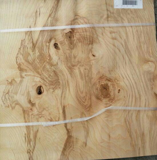 橄榄树瘤--木皮_产品图片信息
