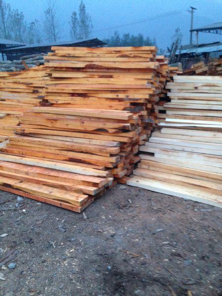 杂木板 桤木板 桦木板--板材原木_产品图片信息_中国