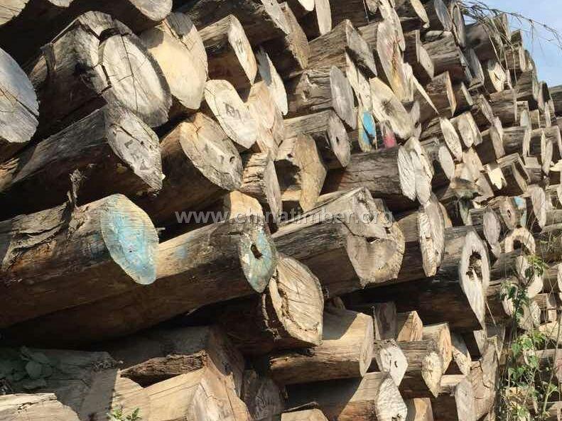 缅甸白酸枝--红木_产品图片信息_中国木材网!
