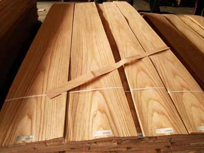 下面为你介绍一下我们常见的几款木皮的种类,以便有助于你选购木